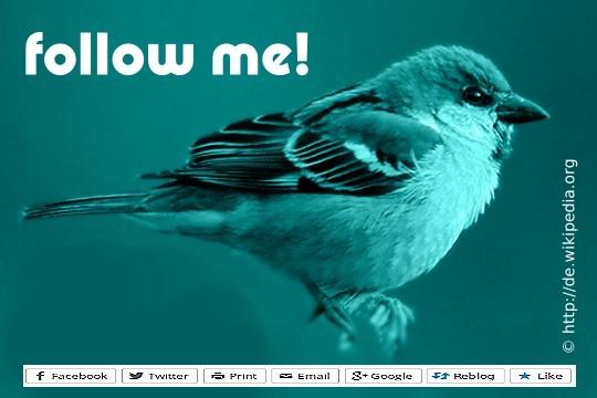 BSMC_follow_me